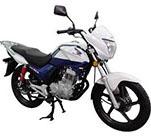 新大洲本田SDH125J-51摩托车